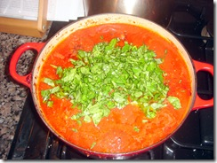 Basil on Sauce
